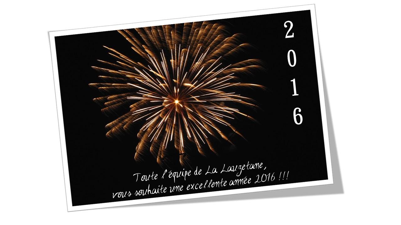 Bonne Ann U00e9e 2016 Au Lauzet